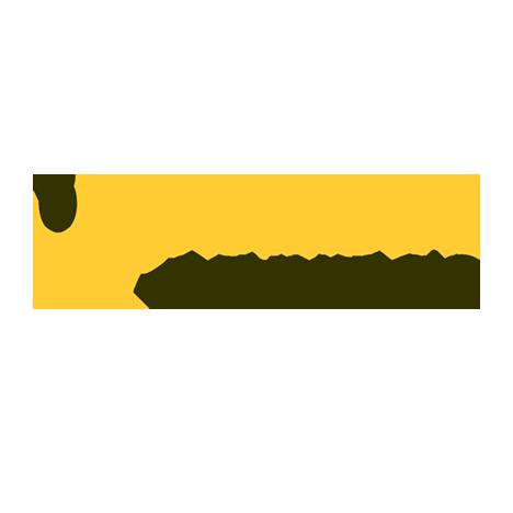 Logo di Fisiomedical Caravaggio